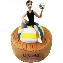 """№3568 """"Волейбол"""""""